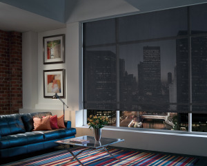 Media Room Window Treatments