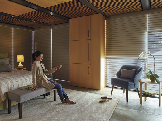 Motorization archives window products ct for Motorized blinds shades