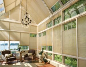 Duette® Honeycomb Shades in the  Sun Room