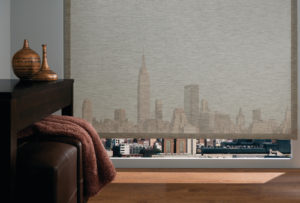 Designer Roller Screen Shades in the Living Room