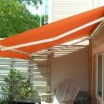 Regal Thumbnail Orange